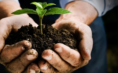 Degustazione Prodotti Biodinamici
